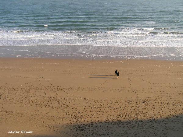 Paseando por la playa en Tenby
